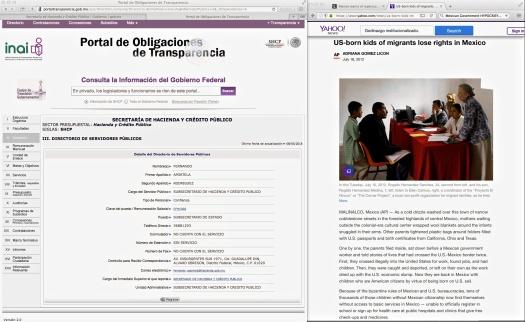 La-Falsedad-de-la-Función_Pública-en-Los_Estados_Unidos-Mexicanos
