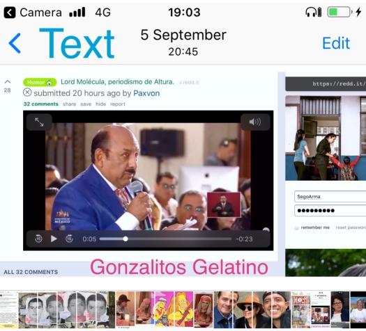 Gonzalitos Gelatino PR(i) News